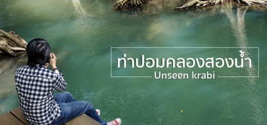 Tha Pom Klong Song Nam, Krabi